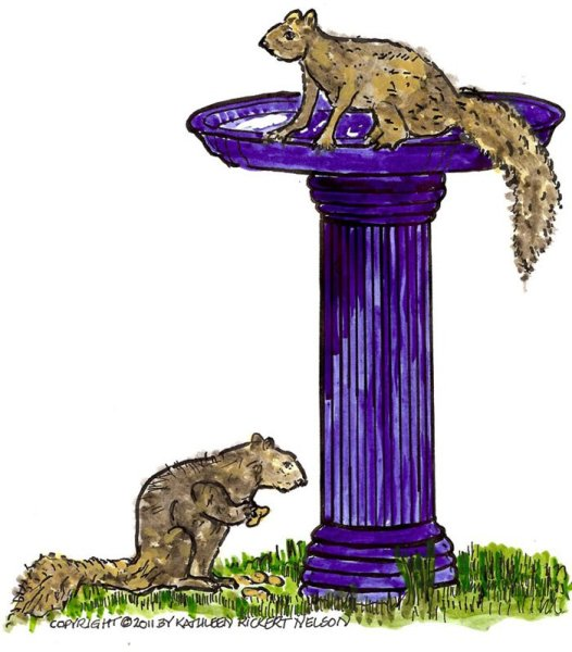 Squirrels-Just-Want-to-Have-Fun