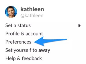 Screenshot - preferences are under your profile photo on sidebar