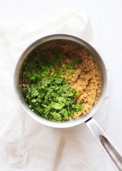 Cilantro Lime Quinoa in pot