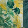 Lavish Flora