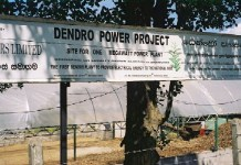 dendro power plant