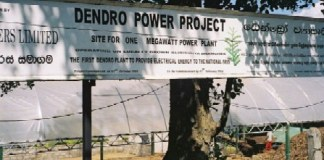 dendro power plant