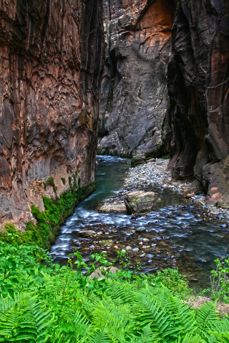 The Narrows Hike - Zion National Park