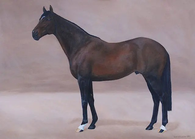 horse, stallion, thoroughbred, Kathrin Guenther, art, painting, acrylic