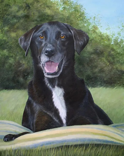 paintings, pet paintings by Kathrin Guenther, acrylic art