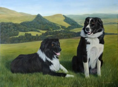 Sheepdogs, Scotland, acrylic painting, Kathrin Guenther, web file