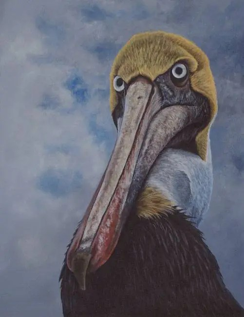 wildlife bird pelican Kathrin Guenther painting acrylic art