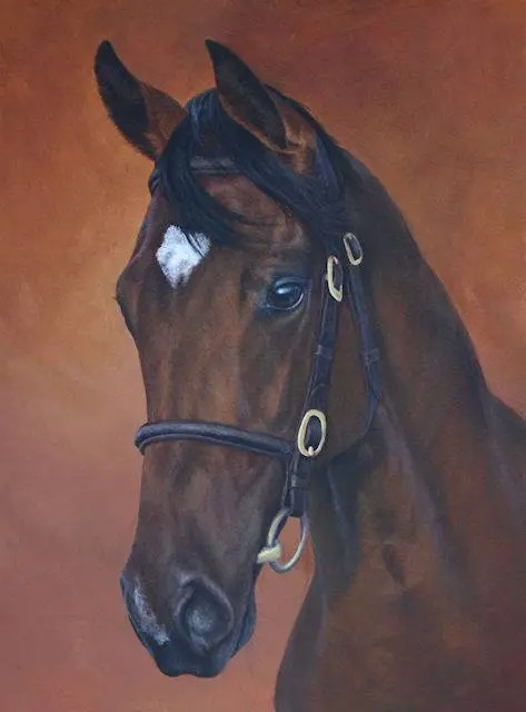 paintings, equine paintings by Kathrin Guenther, acrylic art