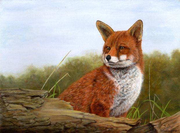 wildlife fox Kathrin Guenther painting art acrylic