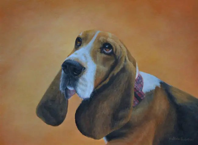 Basset painting by Kathrin Guenther, acrylic painting, artist, about, pet portraits