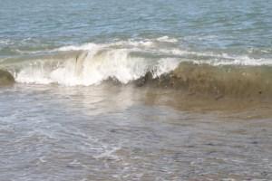 Capitola-waves