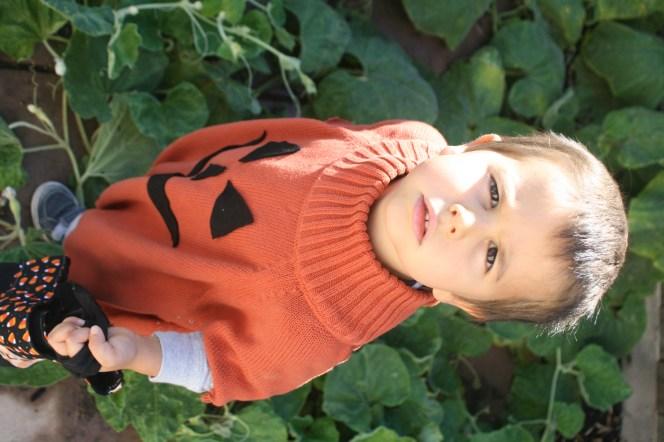 Boy in Halloween Jack-o-Lantern costume