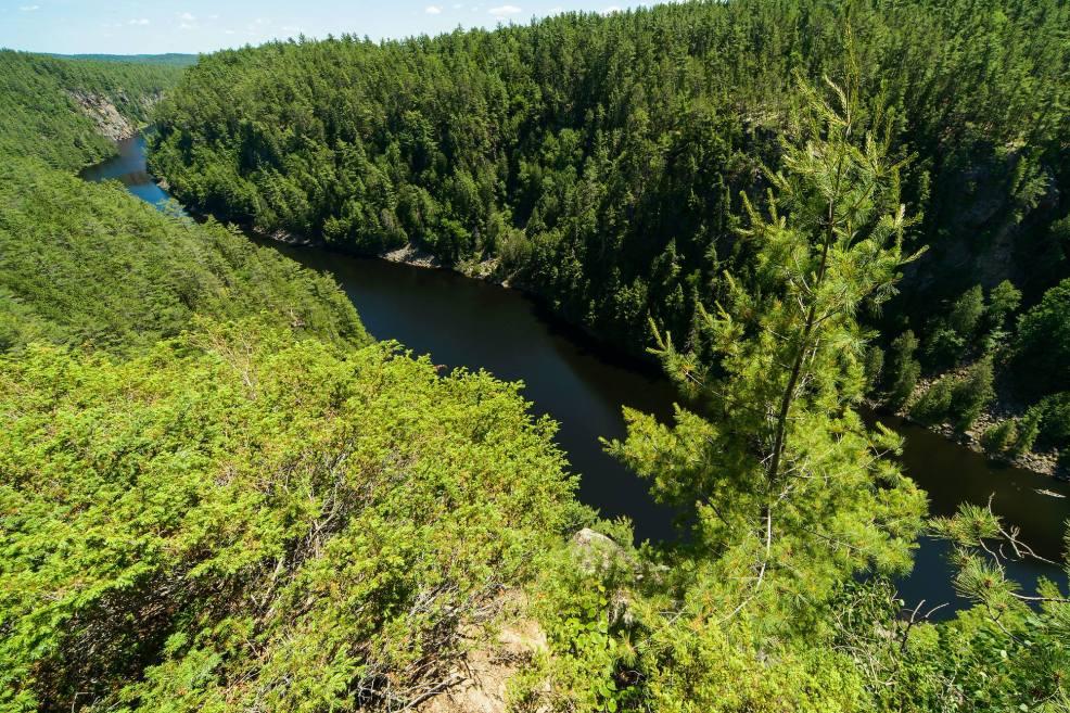 Epic Hikes With Kids - BARRON CANYON TRAIL, canoe enthusiast take note #discoverON #exploremore #barroncanyontrail #algonquinpark #getoutside #liveoutdoors #ontarioparks #welivetoexplore #familytravelblogger #hikingwithkids #kidswhohike #hikingmom