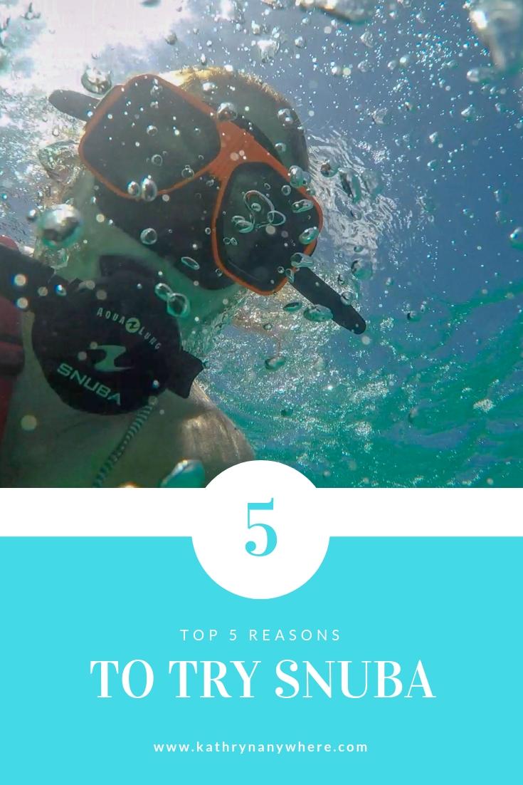 Top 5 Reasons to try SNUBA #diving #Scuba #dive #Sea #snorkeling #scubadive #SNUBA #snubalife #trysnuba #whyyoushouldtrysnuba #BeachesMoms #top5reasons #beachesturksandcaicos
