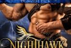 kathrynleveque_nighthawk1400