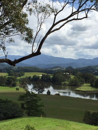 View from Cafe - Tweed Heads Regional Gallery