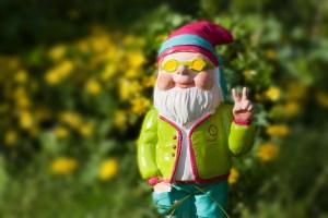 dwarf-1336495_1920