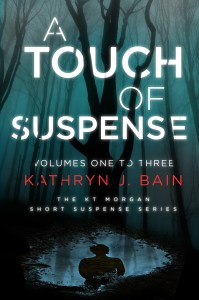 Book Cover: A Touch of Suspense