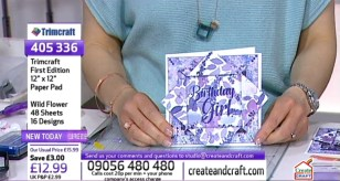 Create & Craft First Edition Papers and Dovecraft stamps live demo2
