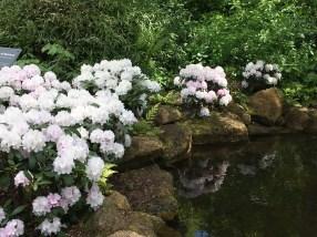 Birmingham Botanical Gardens - Memory Garden