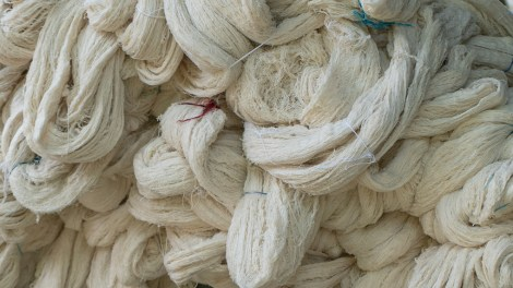 rawcotton1_crop_small
