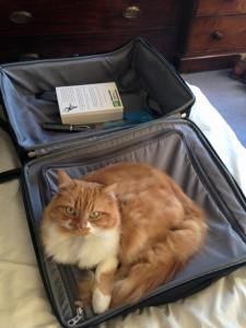 Crunchie welcoming Margaret home... or packing to leave?