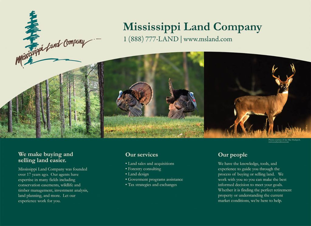 Mississippi Land Company Display