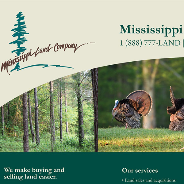 Display Design for Mississippi Land Company