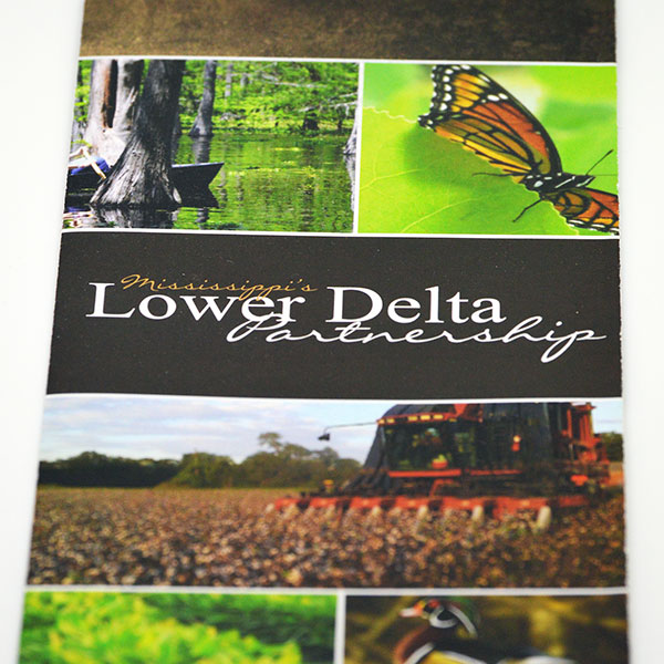 Membership Brochure for the Lower Delta Partnership