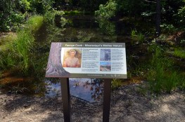 Sign about Fannye Cook
