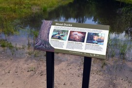 Wood Ducks Sign