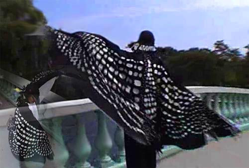 loon woman with wings outstretched on the bridge