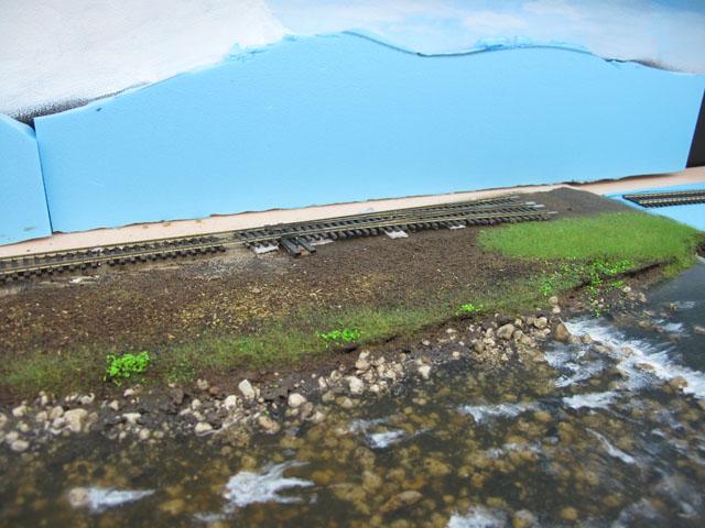 river bank scenery