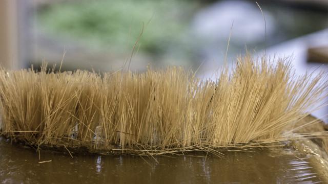 Reeds on the O Scale Diorama