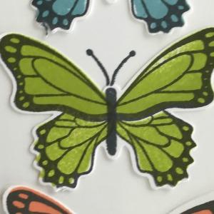 Oh My Butterflies!!!