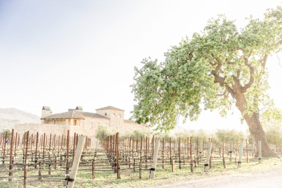 Santa Barbara Destination Wedding Photographers