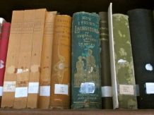 """Dr. Livingstone, I presume?"" and other books from explorer Henry Morton Stanley"
