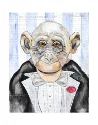 Chester the Chimp