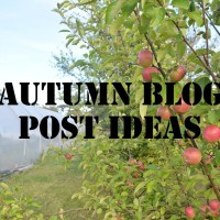 Autumn Blog Post Ideas