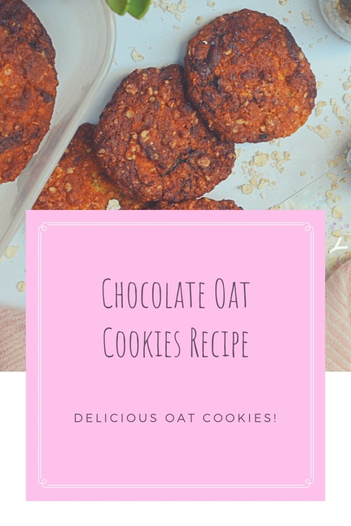 chocolate oat cookies (1)