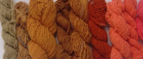Plant Dyes Of Autumn Workshop This Weekend