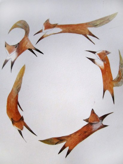 Foxes Dancing in a Circle