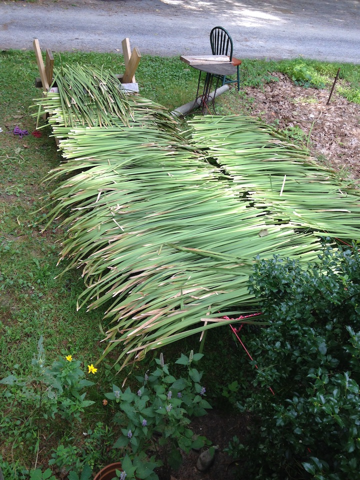 awesome cattail drying racks