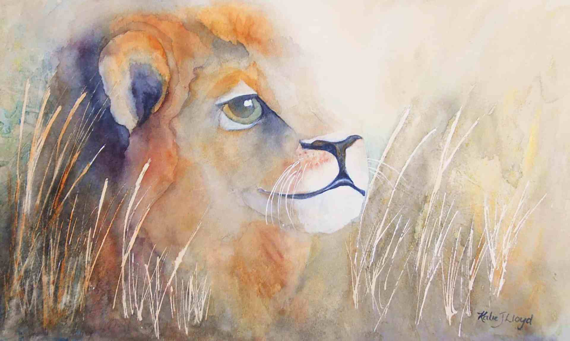 Young lion cub crouching in long grass watercolour painting by artist Katie Lloyd