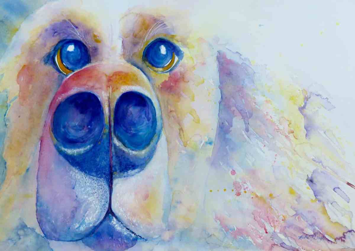 Colourful big dogs big wet nose, watercolour painting in blue, pink, yellow