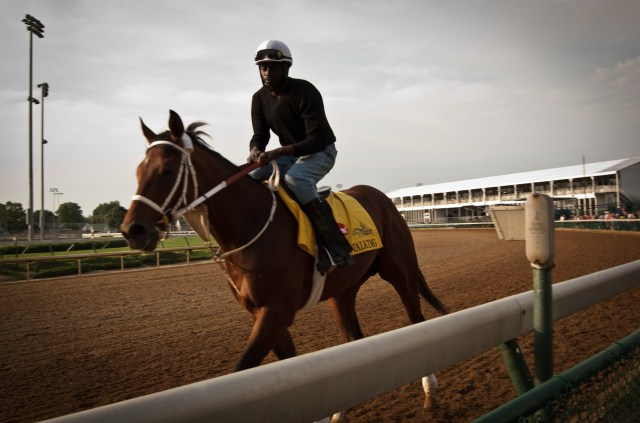this jockey was warming up horses during a session of Dawn at the Downs at Churchill Downs preceding the Kentucky Derby