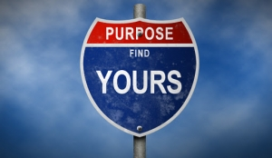 find-your-purpose