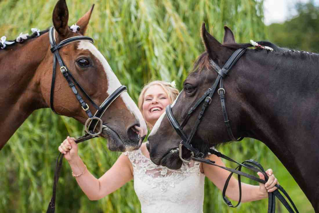 wedding photographer horse hampshire wiltshire