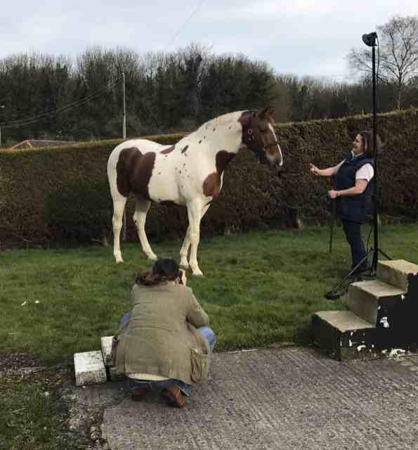 equine portrait photographer hampshire wiltshire behind the scenes