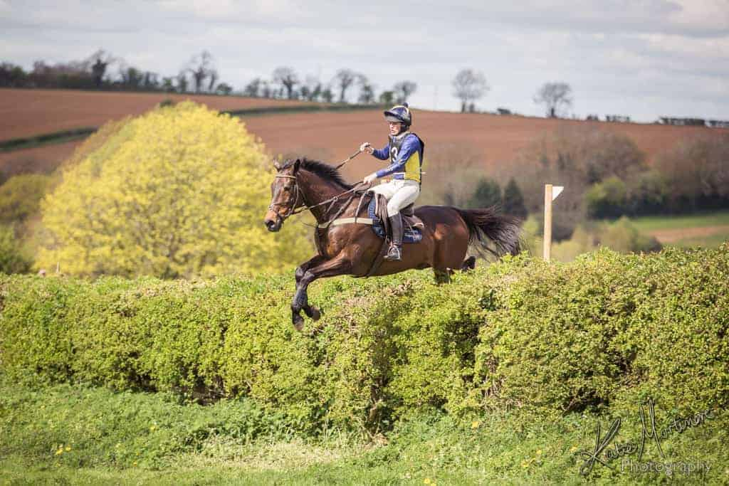 team chasing hedge horse